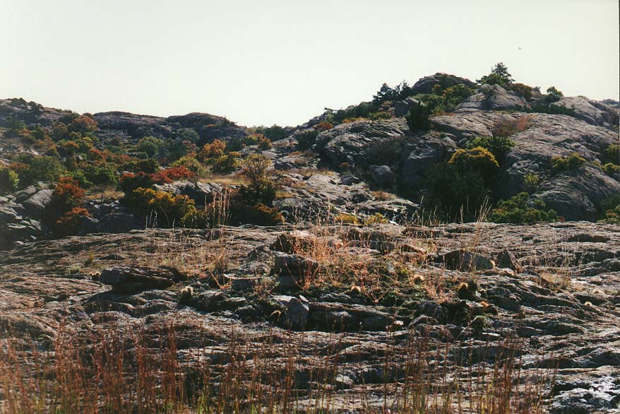 trip to Wichita Mountains with OU Timberline Explorers club