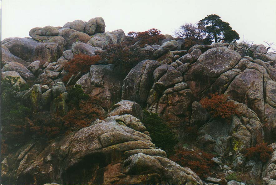 trip to Wichita Mountains with OU Timberline Explorers club Nov. 22, 23