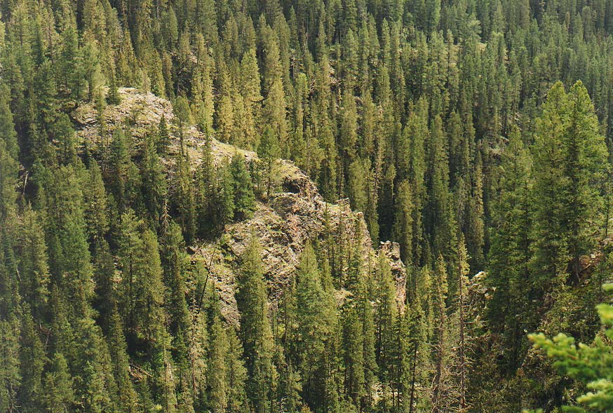 Dallas-a trip to New Mexico mountains  - Pecos Wilderness in New Mexico