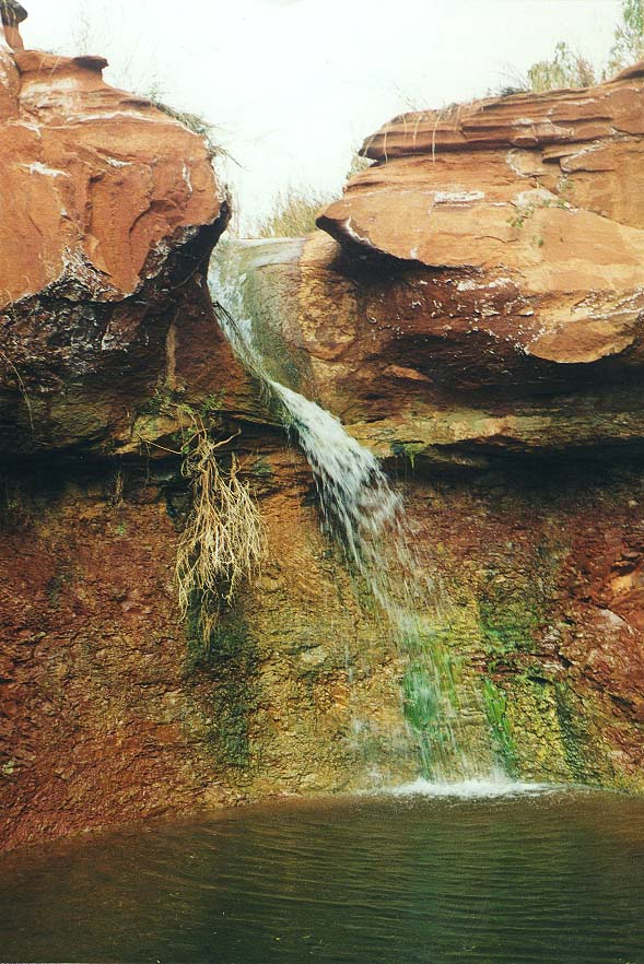 A trip to Caprock Canyons State Park and 2, 1997 - Canyon of Holmes Creek 11/2/97