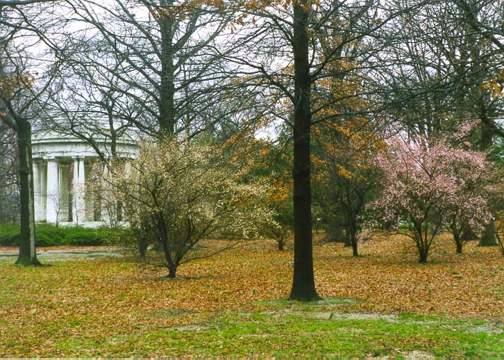 A pavilion and trees in bloom at West Potomac Park during warm weather. Washington DC