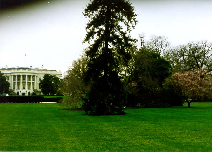 View of White House from the Ellipse. Washington DC