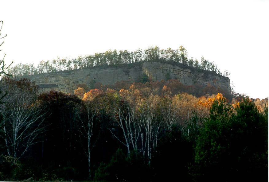 View of canyon walls at evening from Sheltowee...Top Rock. Red River Gorge, Kentucky