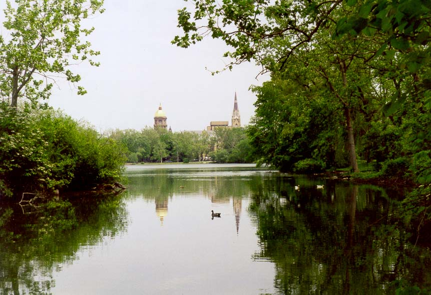 Ducks in St.Mary's Lake reflecting Golden Dome...of Notre Dame. South Bend, Indiana