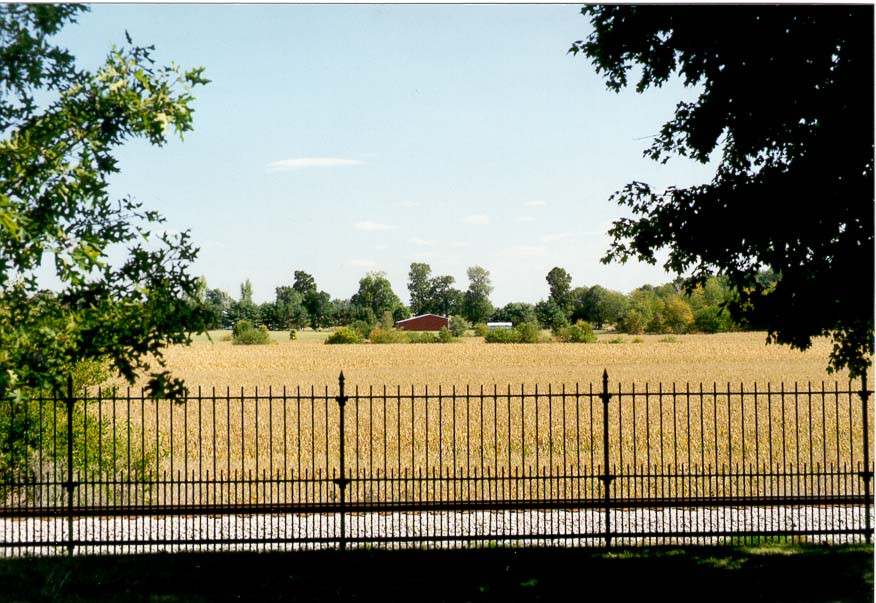 View of corn fields behind a fence of Tippecanoe...park along Harrison Rd.. Indiana