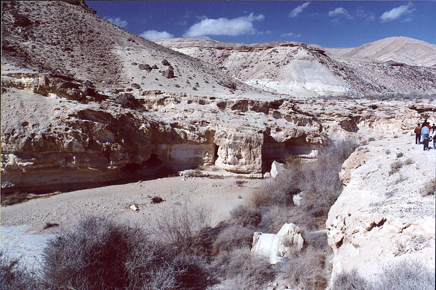 Ein Yorkeam spring in Negev Desert south from Dimona. The Middle East