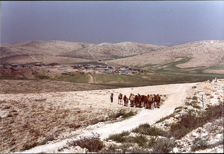 A country road to Bedouin settlements in Negev...east from Beer-Sheva. The Middle East