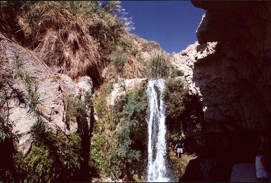 Shulamit Fall on David Creek in Ein Gedi. The Middle East