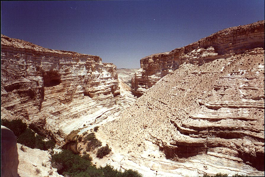 Ein Avdat canyon, view from the upper entrance. The Middle East