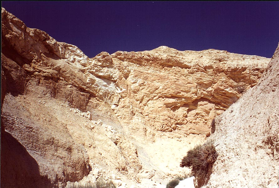 Canyon of Horim Creek near Sede Boqer in Negev Desert. The Middle East