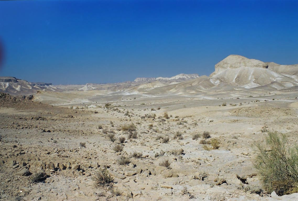 Judean Desert on the plateau, near Ein Bokek. The Middle East