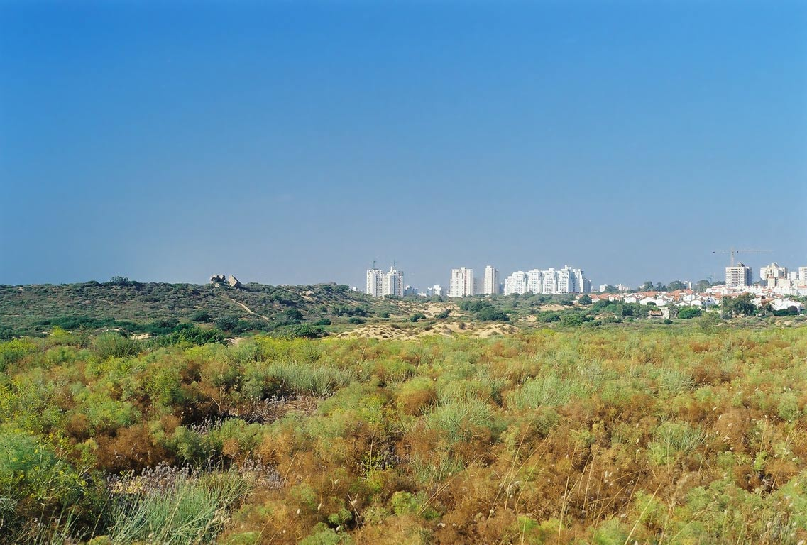 View of Ashkelon from sandy dunes of north-west area. The Middle East
