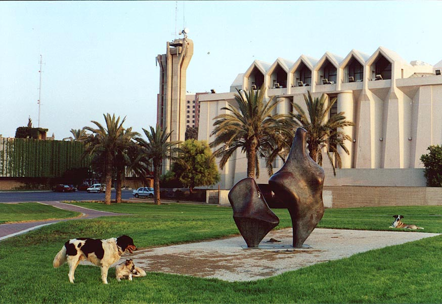 Stray dogs in front of the City Hall. Beer-Sheva, the Middle East