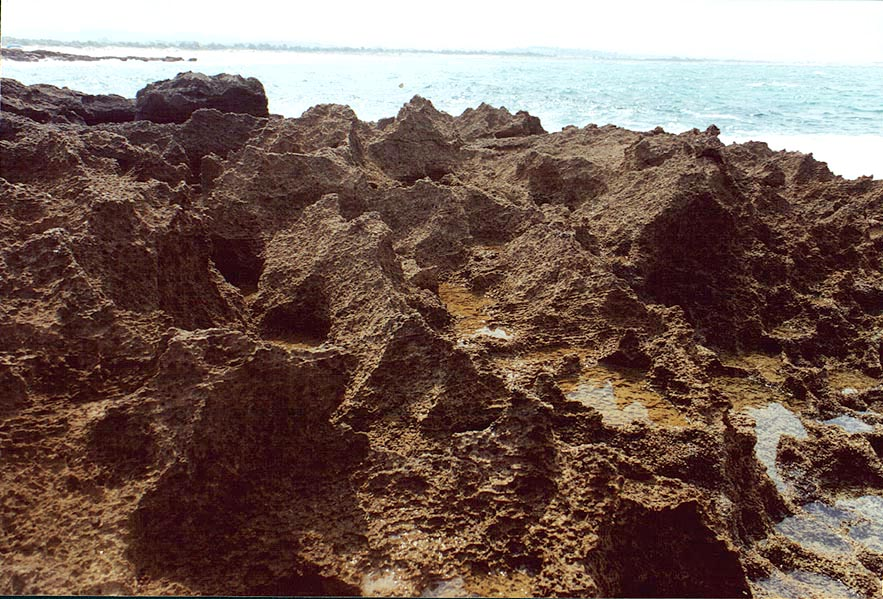 Eroded limestone on a beach near Habonim. The Middle East