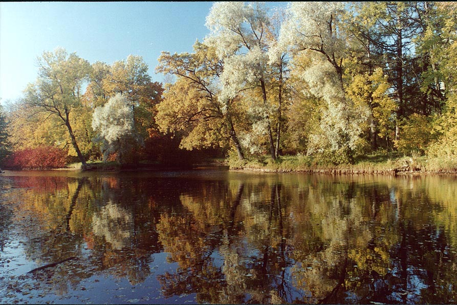A pond and canals of Elagin Island at fall. Sankt Petersburg, Russia