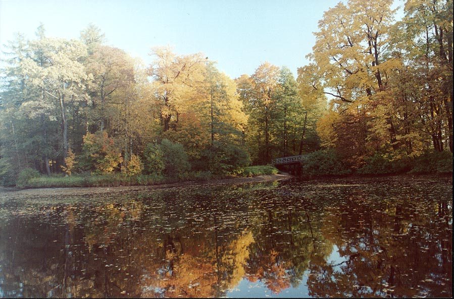 A pond on Elagin Island at fall. Sankt Petersburg, Russia