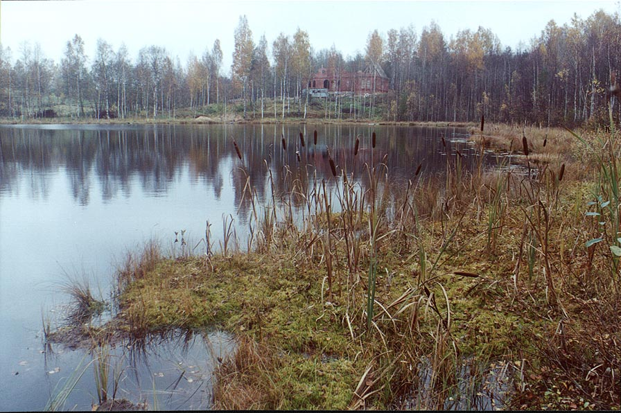 A small lake 1 mile east from Toksovo, 10 miles north from Sankt Petersburg. Russia