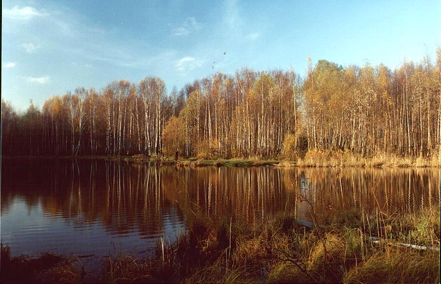 A lake in Sosnovka Park, in northern Sankt Petersburg. Russia
