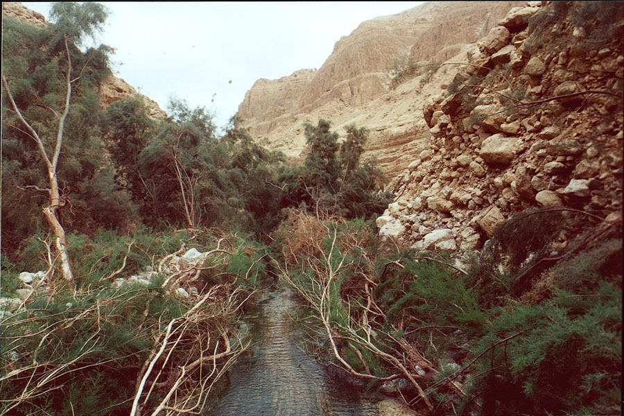 Trail to Upper Pools of Nahal Arugot. Ein Gedi, the Middle East