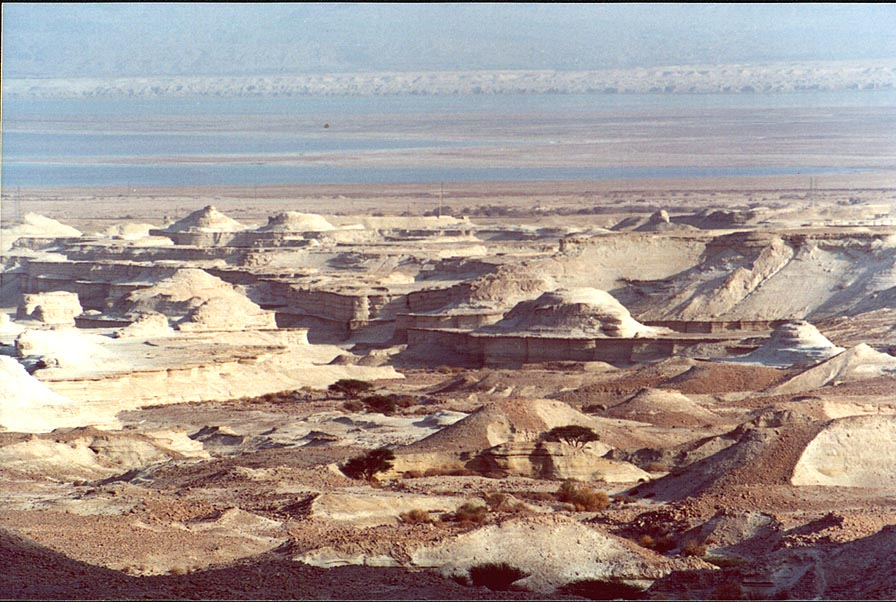 View of dry riverbeds composed of powdery chalk...north from Masada. The Middle East