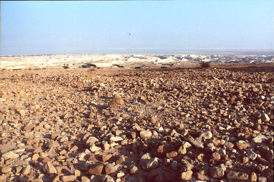 View of remains of a Roman camp and Dead Sea from...north from Masada. The Middle East