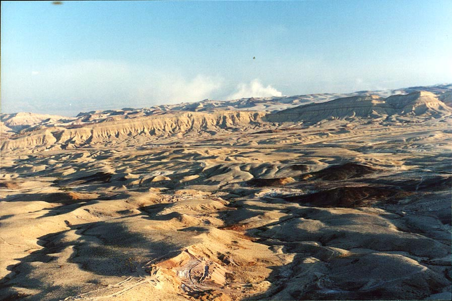View of Big Crater (Makhtesh Gadol) from Avnon...Plant at background. The Middle East