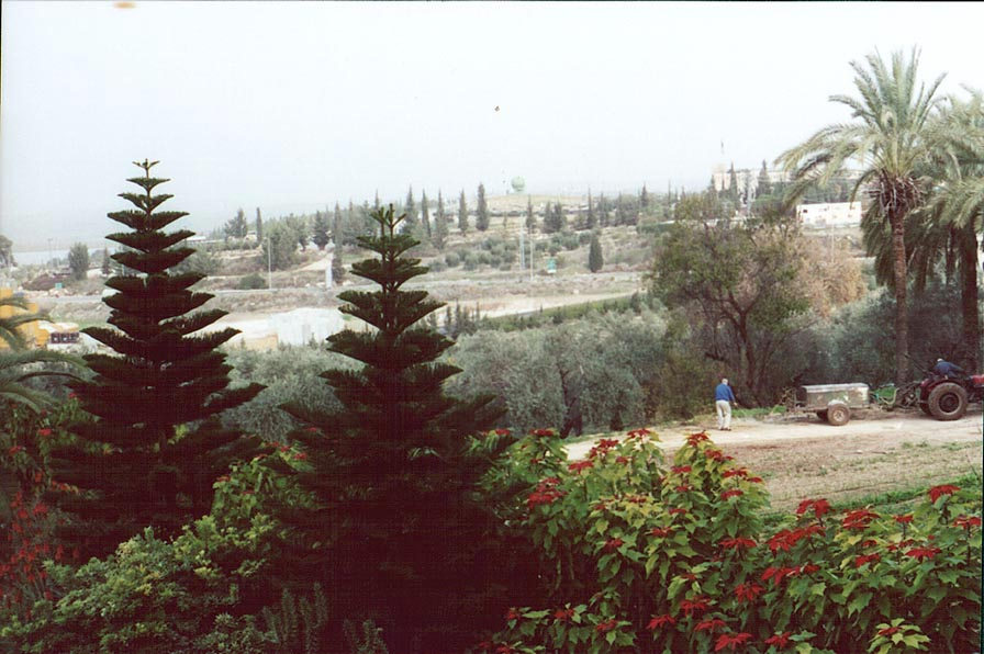 Latrun, view from the Trappist Monastery. The Middle East