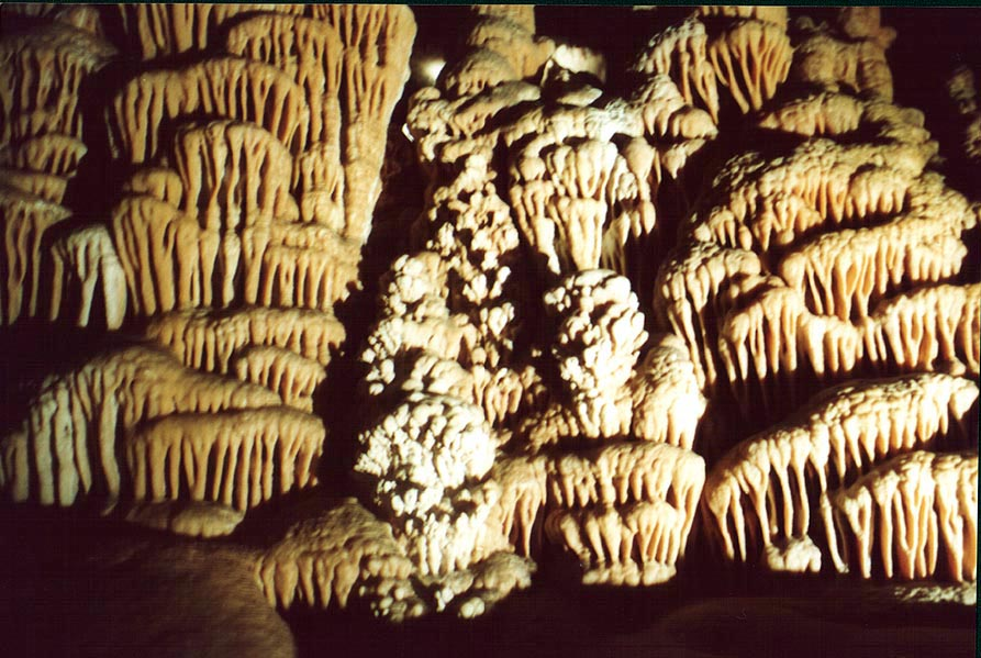 Wall of stalactites in Sorek Cave, west from Jerusalem. The Middle East