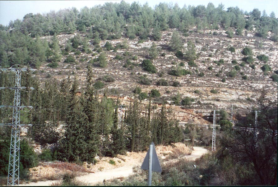 View of Sorek River from Rd. 395, west from Jerusalem. The Middle East