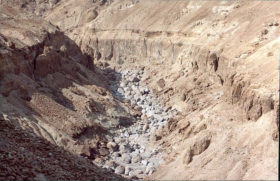 Nahal Tseelim River Canyon, 2 miles north from Masada. The Middle East
