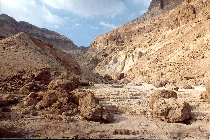 Nahal Tseelim River, 2 miles north from Masada. The Middle East