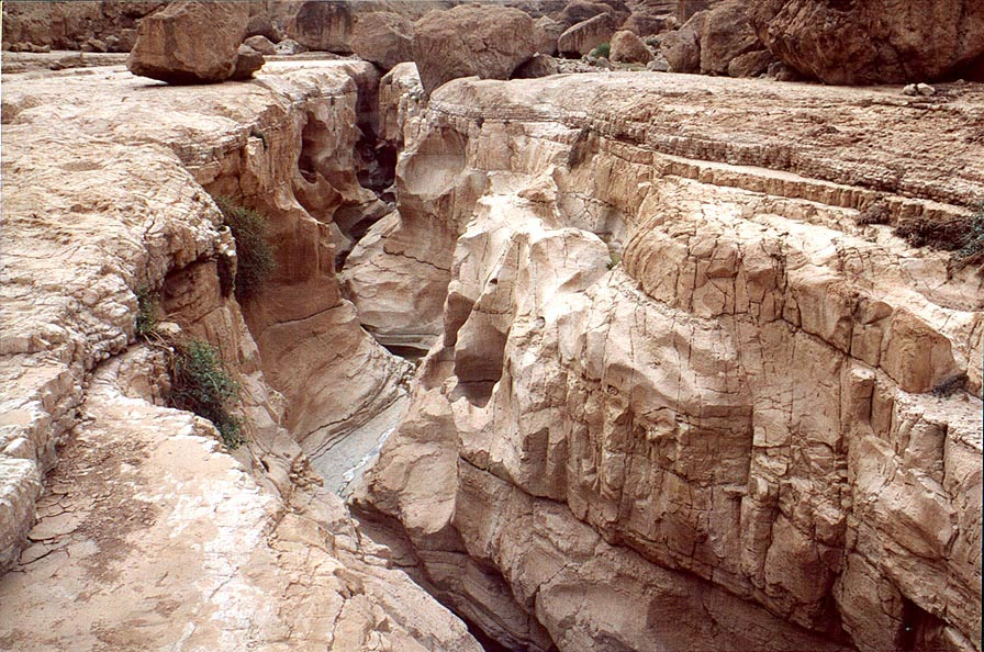 Geye Bahak Gorge, 2 miles north from Masada. The Middle East