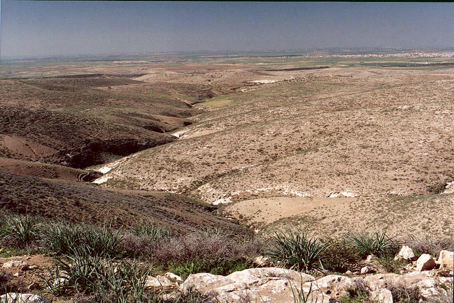 View to the west from Givot Goral Reserve, with...north from Beer-Sheva. The Middle East