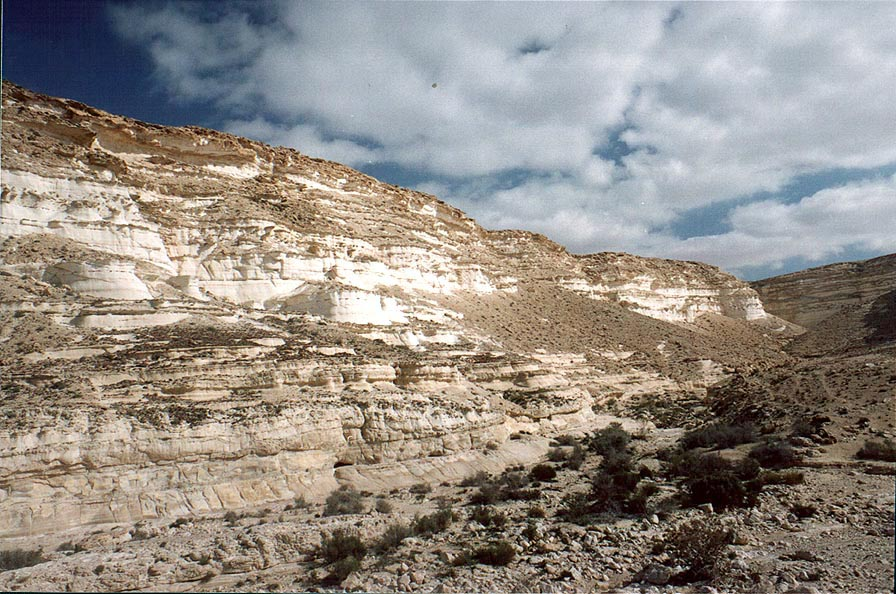 Nahal Akev creek canyon, 2.5 miles east from Avdat. The Middle East