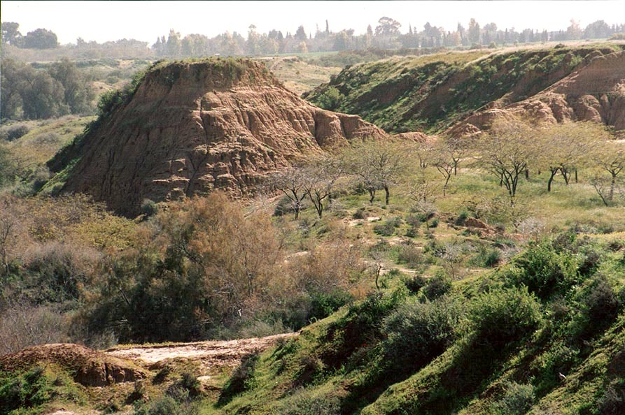 Badlands of Nahal Besor River in Eshkol Park 10...an observation hill. The Middle East