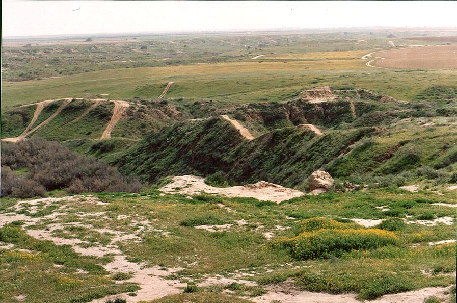 View of Nahal Besor badlands to the south from...west from Ofakim. The Middle East