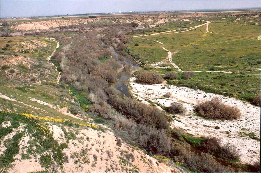 Nahal Besor River with Urim airfield at the...west from Ofakim. The Middle East