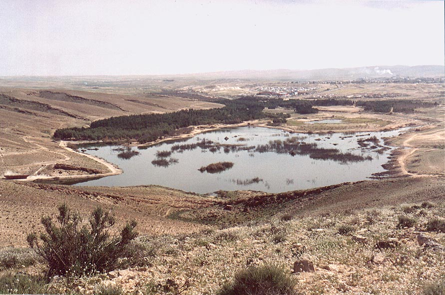 View of a heavily polluted Yeroham reservoir from...factories behind it. The Middle East
