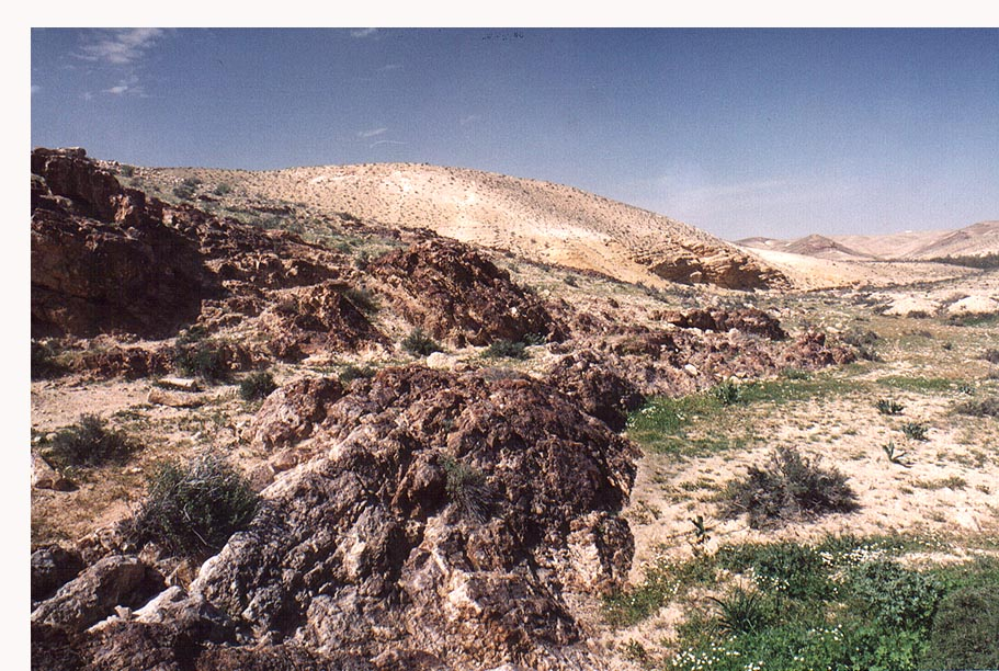 Nahal Revivim behind Yeroham reservoir. The Middle East