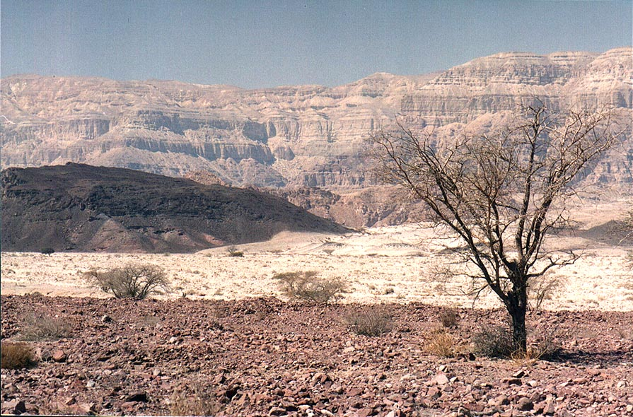 View of Timna Stream and Timna Cliffs north from Timna Park gate. The Middle East