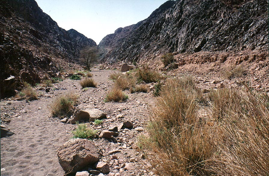 Geological Trail through Timna Mountains, near the beginning. The Middle East
