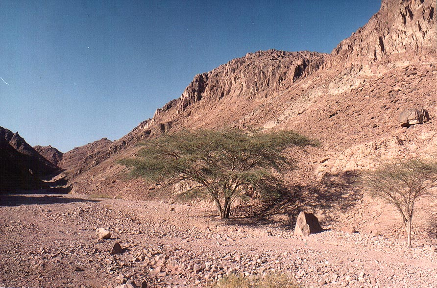 A short trail north from Solomon Pillars through Timna mountains. The Middle East