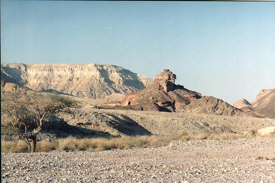 View of Spiral hill from northern road through Timna Park. The Middle East