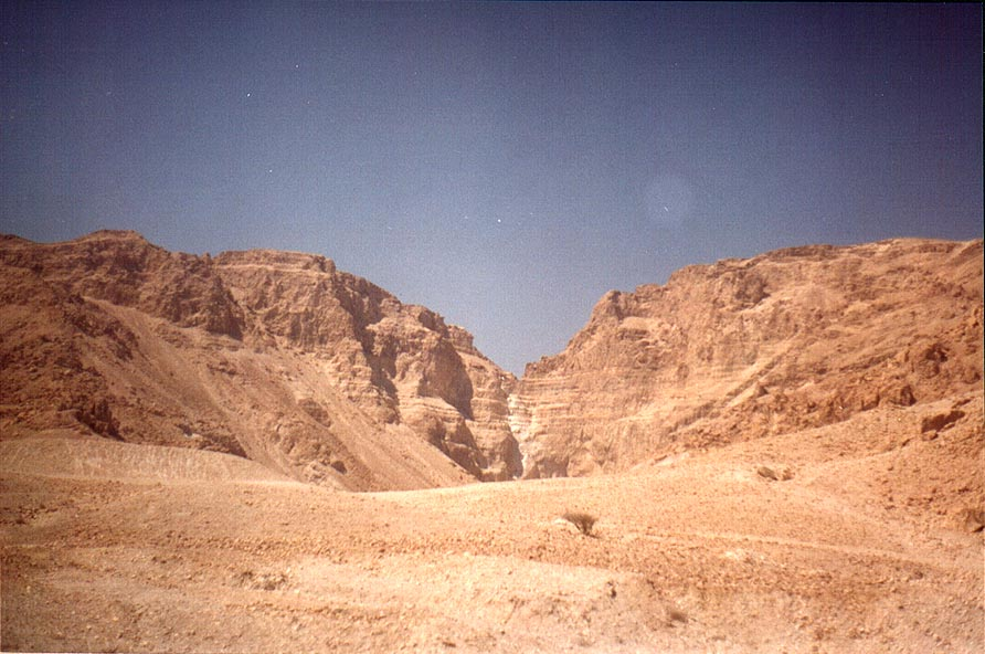 Nahal Mor river, view from a road along Dead Sea. The Middle East
