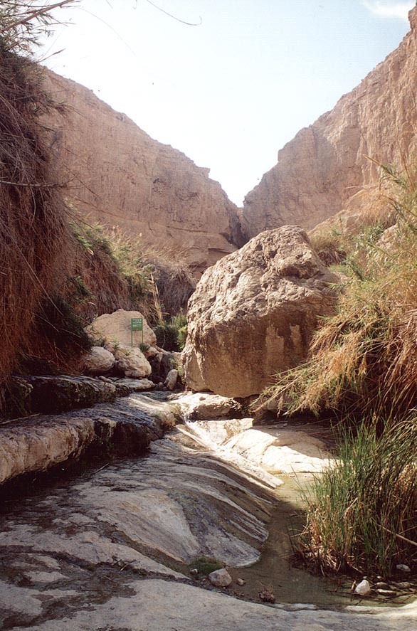 Near Dudaim Cave. Ein Gedi, the Middle East