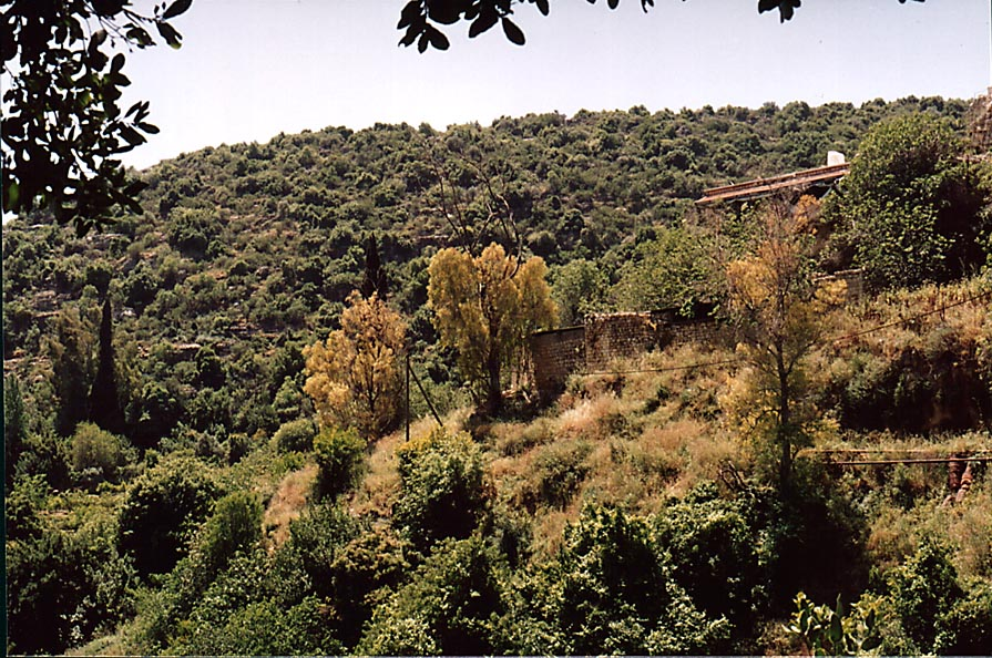 Mills at Nahal Ammud River near Safed. The Middle East