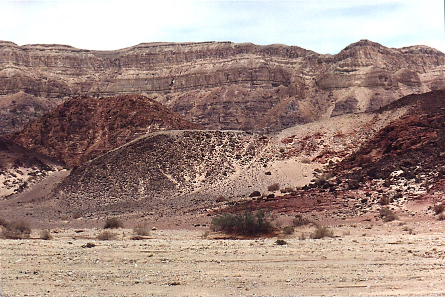 View to the north-west along Timna Stream from the entrance to Timna Park. The Middle East