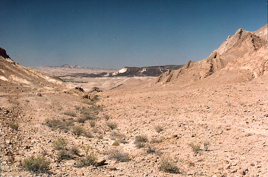 View to the west along southern side of Ramon...from Mitzpe Ramon. The Middle East