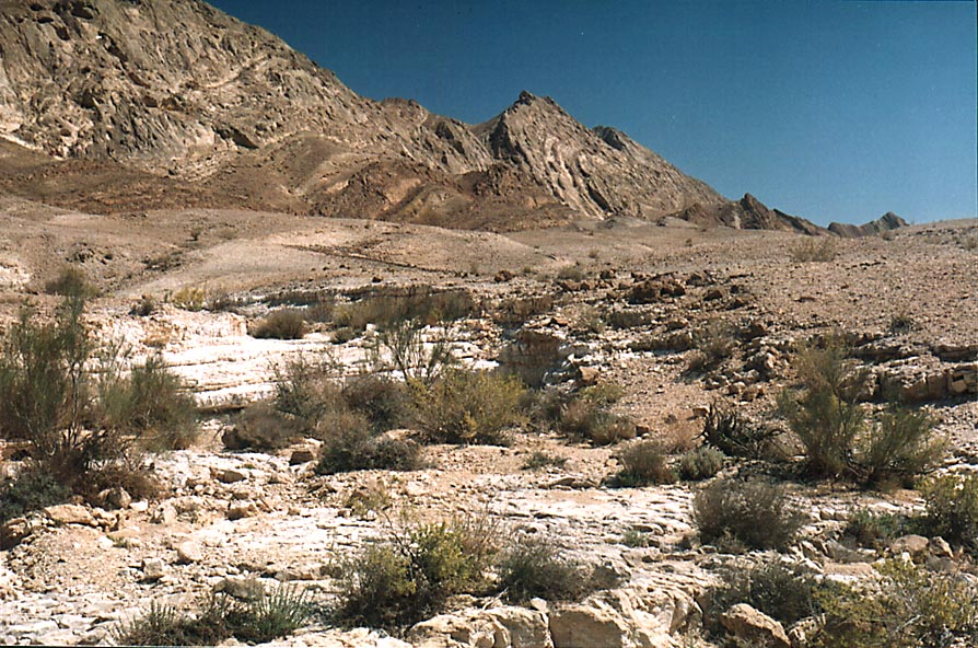 One of tributaries of Nahal Nekarot River at...from Mitzpe Ramon. The Middle East