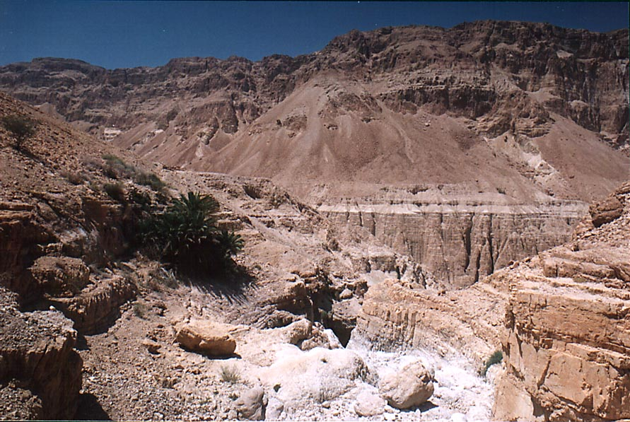 En Aneva spring (to the left) and Tseelim Canyon...road from Masada. The Middle East